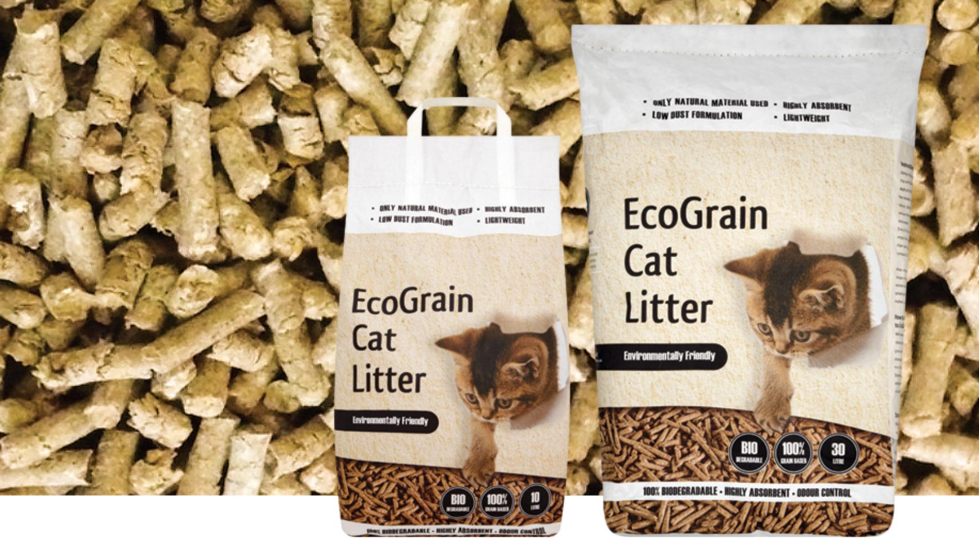 litter box cat