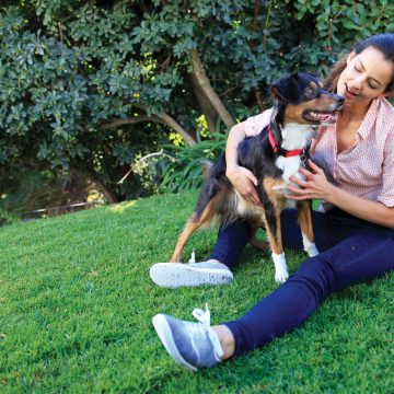 When Pets are Healthier, They're Happier!