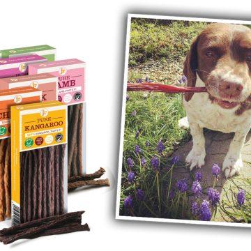 Guilt-Free Dog Treats