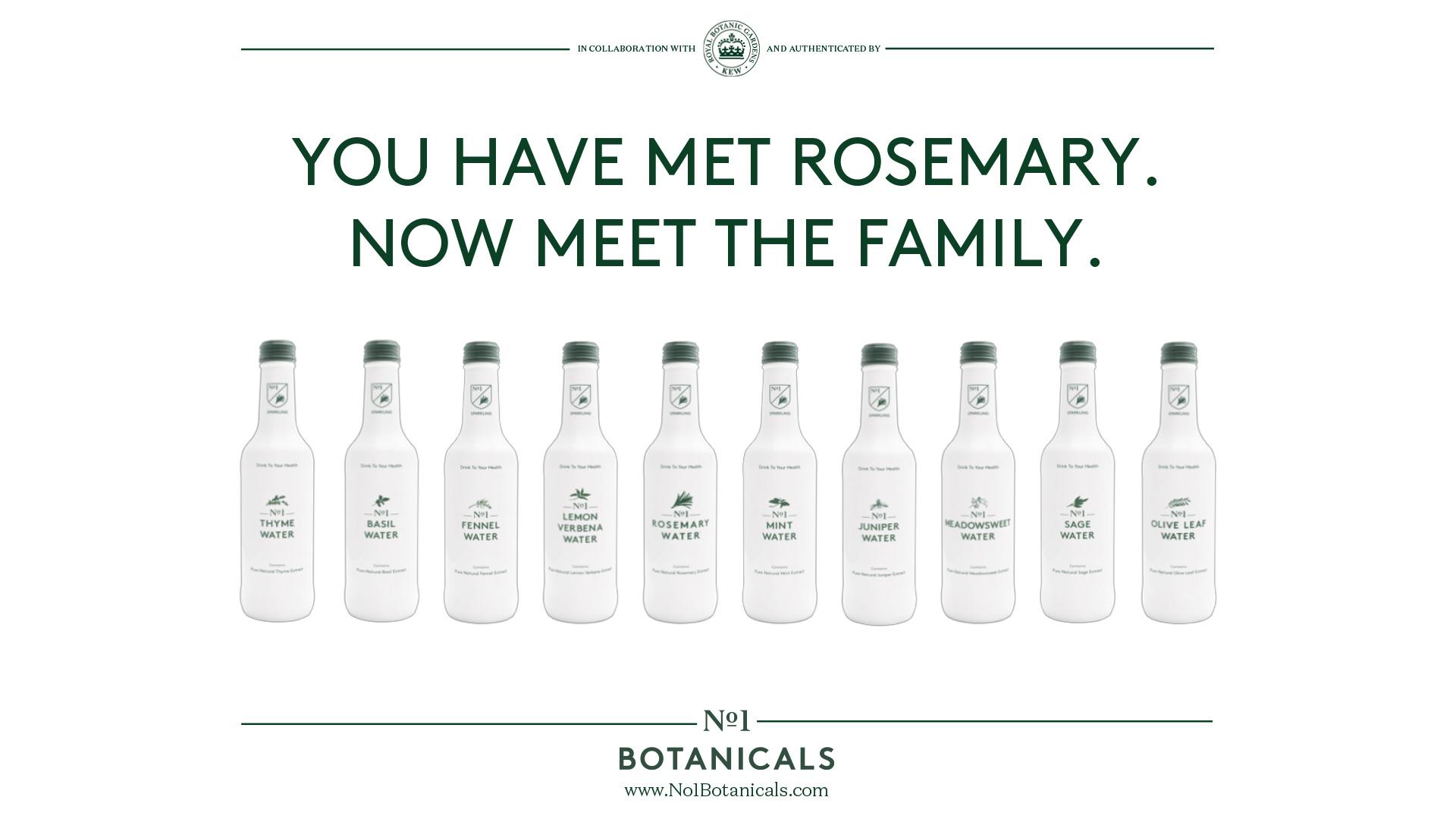 Image result for no1 botanicals
